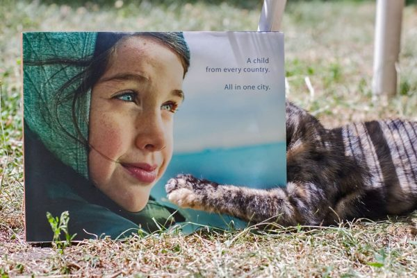 NYChildren Photography Book by Danny Goldfield.  Book is open on the grass and a brown cat has its head burried in the book.